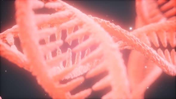 Thumbnail for Doppelspiralförmige Struktur der DNA-Strang-Nahaufnahme Animation