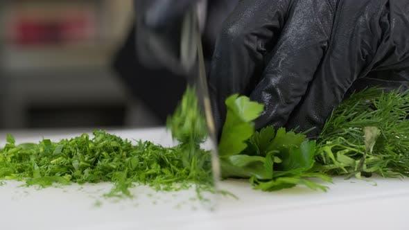 Fresh Greens Salad Lettuce Table Kitchen