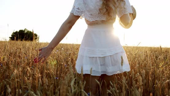 Thumbnail for A Woman Happily Walking Through a Field Touching with Hand Wheat Ears and Sunlight in Wheat Field