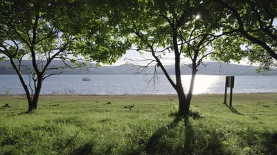 Looking Out From an Orchard to a Secluded Bay