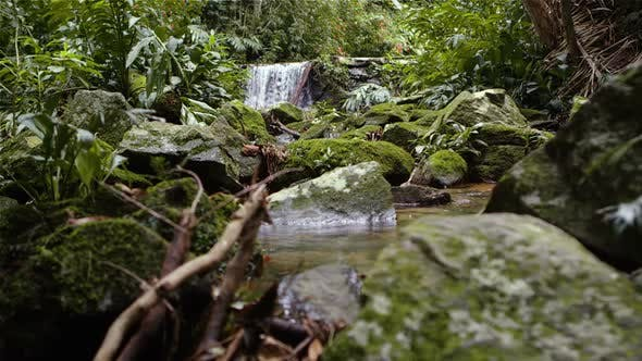 Thumbnail for Tracking footage of a jungle waterfall