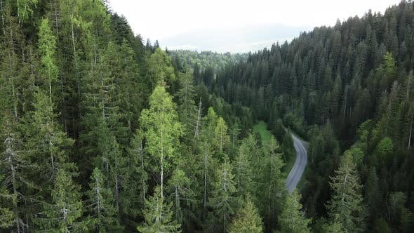 The Road in the Mountains. Slow Motion. Carpathians. Ukraine. Aerial