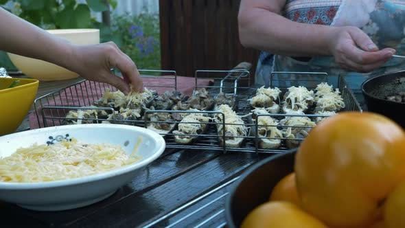 Thumbnail for Women preparing grilled vegetables outside. Female hands put cheese on eggplant. Picnic outdoor