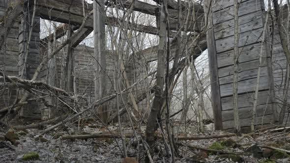 Thumbnail for Ruins