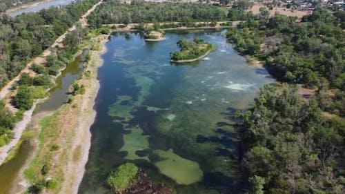 Algae Covered Lake And Island