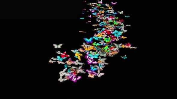 Butterfly HD
