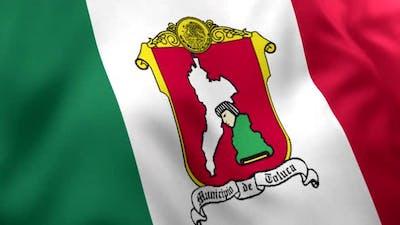 Toluca City Flag (Mexico)