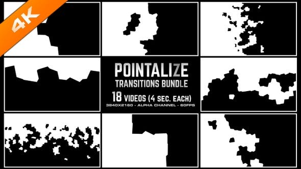 Thumbnail for Pointalize Transitions Bundle