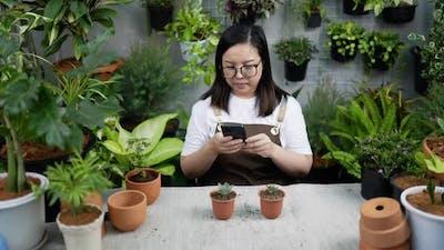 Woman take a photo on phone plant to social