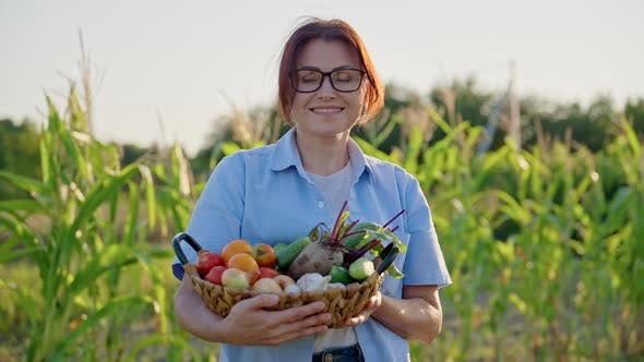 Middleaged Woman Gardener Farmer with Basket of Ripe Vegetables