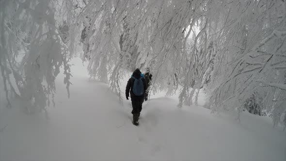 Thumbnail for People Hiking In Snow Winter Mountain Forest