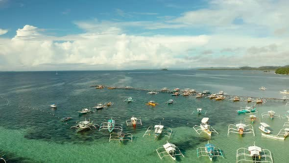 Thumbnail for Pier with Boats in the Sea, Aerial View. General Luna, Siargao Island.