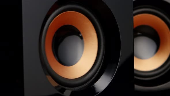 Cover Image for Speaker Pumps with Bass. Closeup