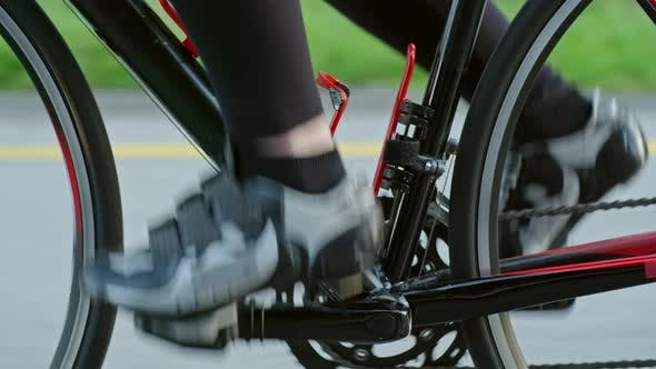 Cover Image for Unrecognizable Person Pedaling Bicycle