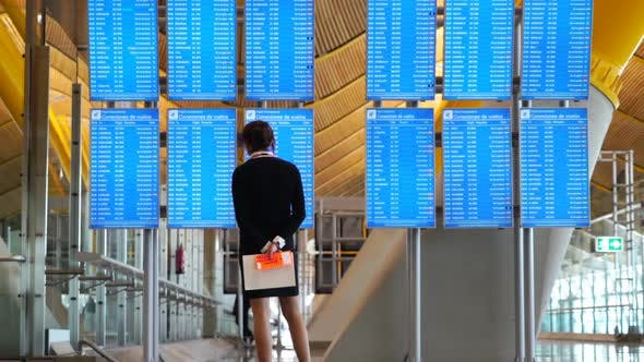 Thumbnail for Airport Flights Screen Information