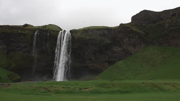 Cover Image for Seljalandsfoss Waterfall With Lots Of Water And Flying White Birds South Region In Iceland