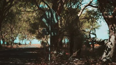 Outback Road with Dry Grass and Trees