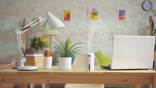Ultrasonic Humidifier in Modern Apartments