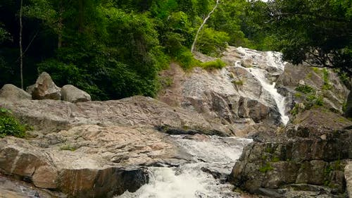 Mountain River Flowing in Rainforest. Endless Meditative Video, Stream in Tropical Exotic Jungle