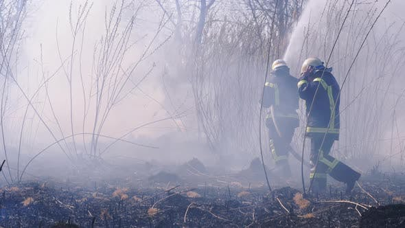 Cover Image for Two Firefighters in Equipment Extinguish Forest Fire with Fire Hose. Slow Motion