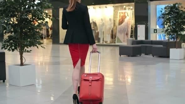 Thumbnail for Elegant Business Traveler