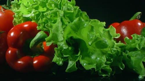 Macro Shot Of Homegrown Vegetables