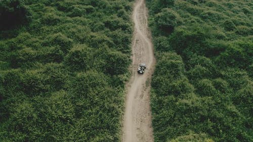 4X4 Vehicle Following a Rough Trail Surrounded By Rich Green Trees