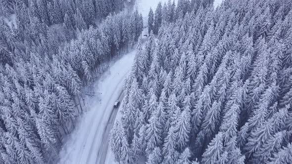Thumbnail for Aerial Flight Over Winter Forest with Road