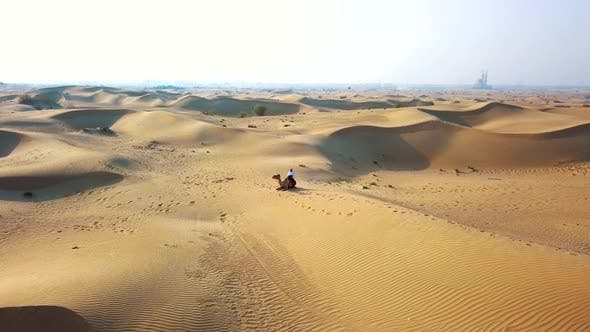 Thumbnail for Aerial Survey Drone Flies Over the Desert, Bedouin with a Camel Resting