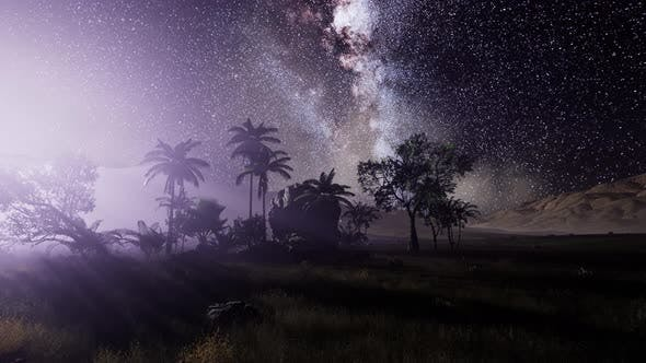 Thumbnail for Milky Way Galaxy Over Tropical Rainforest