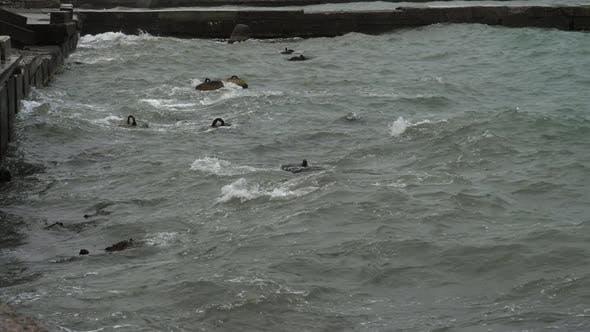 Sea Wave on a Cloudy Rainy Day