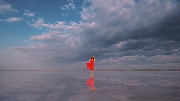 Cover Image for Portrait of a Young Woman in a Fluttering Dress. Girl Traveler Walks on a Pink Salt Lake
