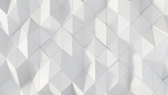 Elegant White Polygons 23