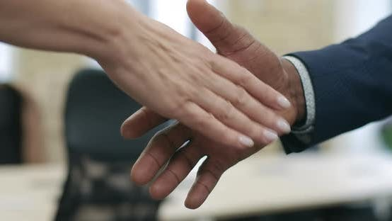 Thumbnail for Close-up Handshake of African American Businessman and Caucasian Businesswoman. Unrecognizable
