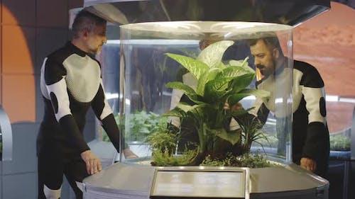 Astrobiologistes examinant l'incubateur de plantes