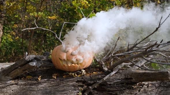 Thumbnail for Pumpkin with white smoke