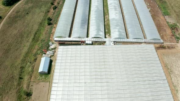Thumbnail for Drone Flying Over a Greenhouse with Vegetables Growing