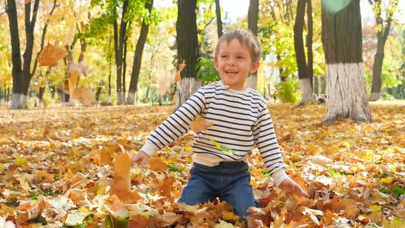 Thumbnail for Slow Motion Video of Cheerful Little Boy Sitting on Grass at Autumn Park and Throwing Up Yellow and
