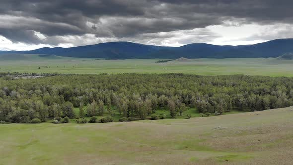Trees, Forest and Vast Meadow in The Big River in Wide Valley of Asia Geography