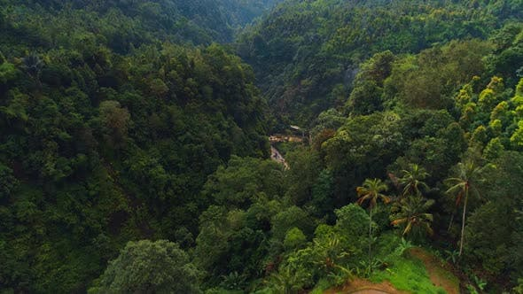 Thumbnail for Flight Over The Jungle Of An Exotic Island. Mountain Gorge And Rice Terraces