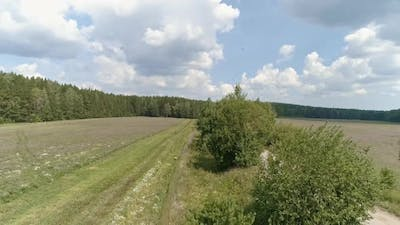 Aerial view of Field, forest, dirt road and birds. 39