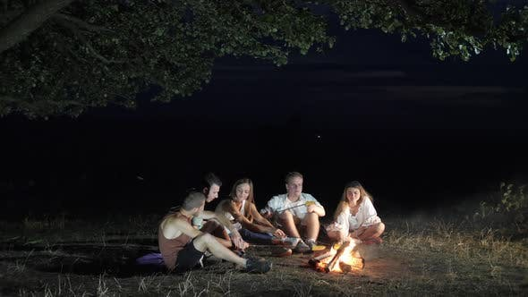 Cover Image for Friends at the campfire