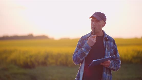 Thumbnail for Agriculture - Farmer or Agronomist Walking on Field Looking at Crops Examining Plants