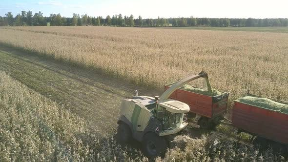 Thumbnail for Combine Mows, Chops Corn and Loads Into Vehicle