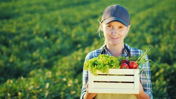 Thumbnail for Portrait of a Female Farmer Standing in the Field, Holding a Box with a Set of Fresh Vegetables