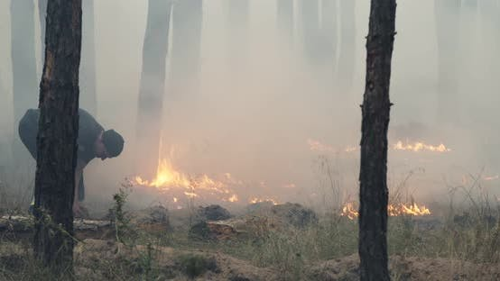 Thumbnail for Firefighter Extinguishing Forest Fire with Sand. Strong Flames, Smoke Rise From Burning Dry Bush.