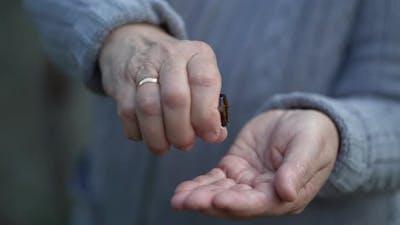 Pills in a Elderly Woman Hands