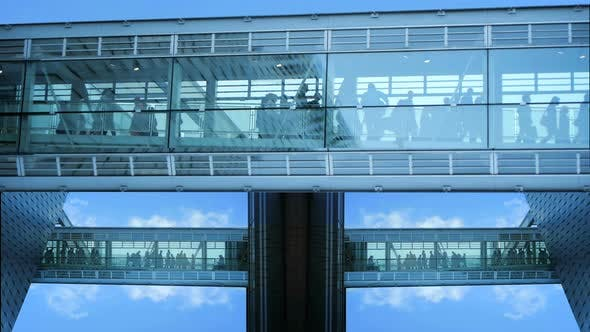 Thumbnail for Crowd of Business People Walking Through Modern Hall Way In City Business District