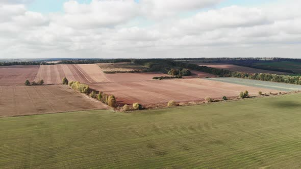 Thumbnail for Beautiful natural agricultural fields in autumn sunny day. Drone flying over wheat field