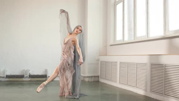 Thumbnail for Ballet Practice. Beaty and Grace of Female Professional Ballet Dancer